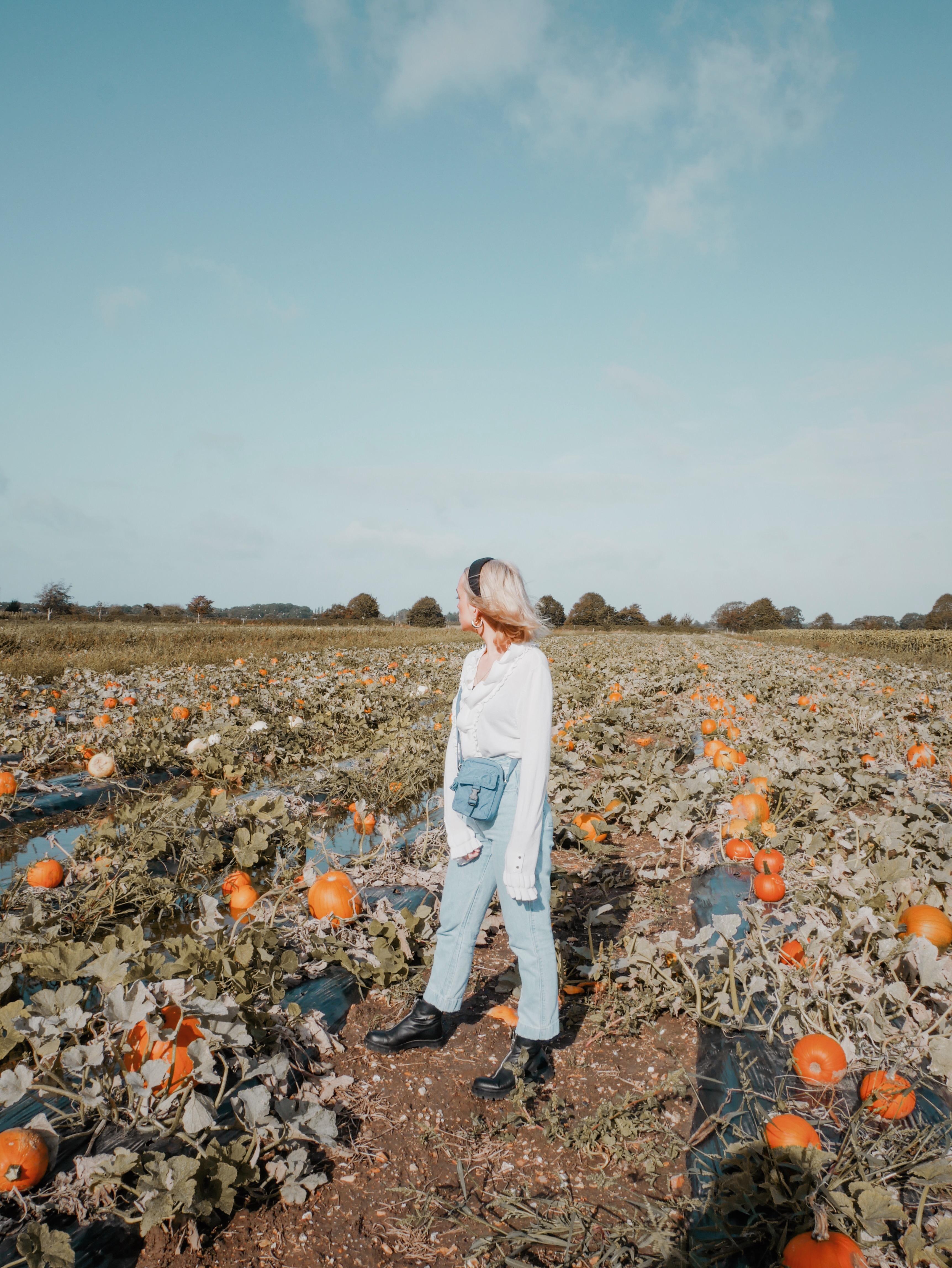 embracing autumn with kipling